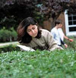 Girl studying on grass